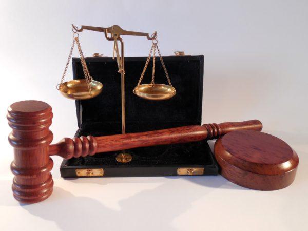 Dawn Ellmore Employment - Intellectual property enterprise court