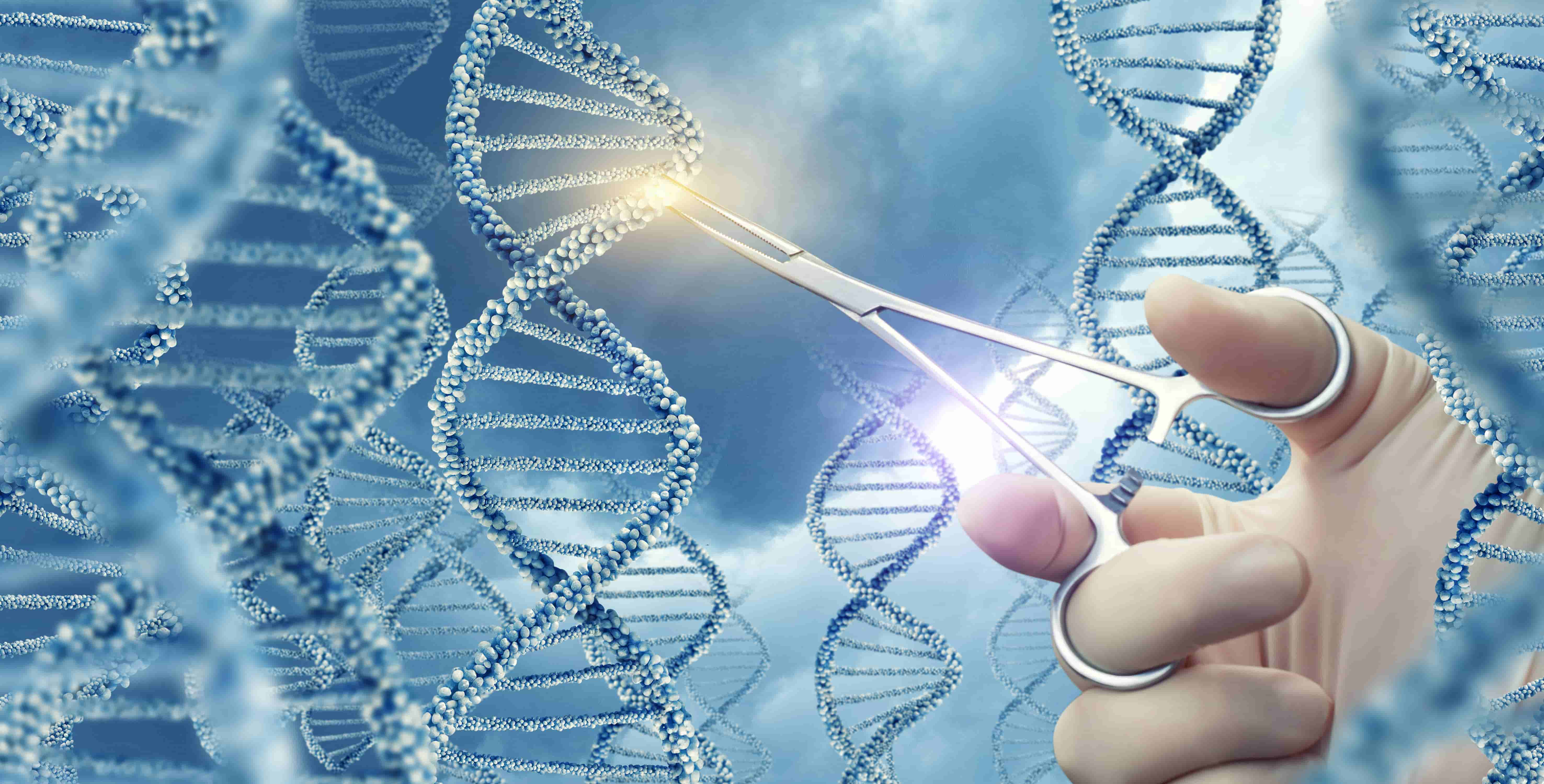 Scientists Battle Ownership of Patents for Gene-Editing Tool