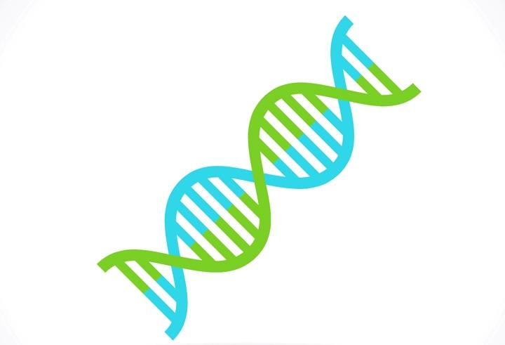Dawn Ellmore - Ancestry.com Settles Patent Lawsuit for $12.5 Million