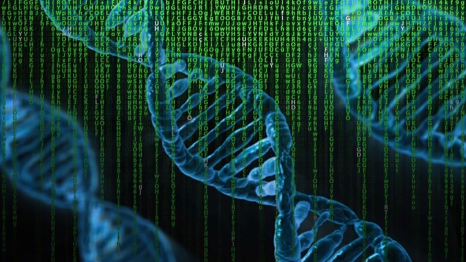 Ancestry.com Settles Patent Lawsuit for $12.5 Million