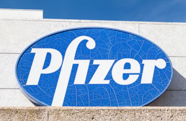 Dawn Ellmore Employment - pfizer patent trade mark