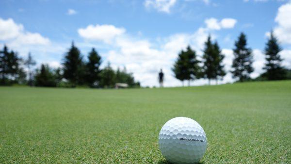 Dawn Ellmore Employment - Nikes new AR golf patent